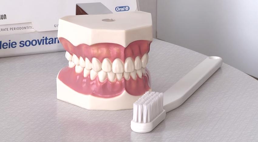 Hambaarst Maie Matšenas räägib grillihooaja hambahooldusest2
