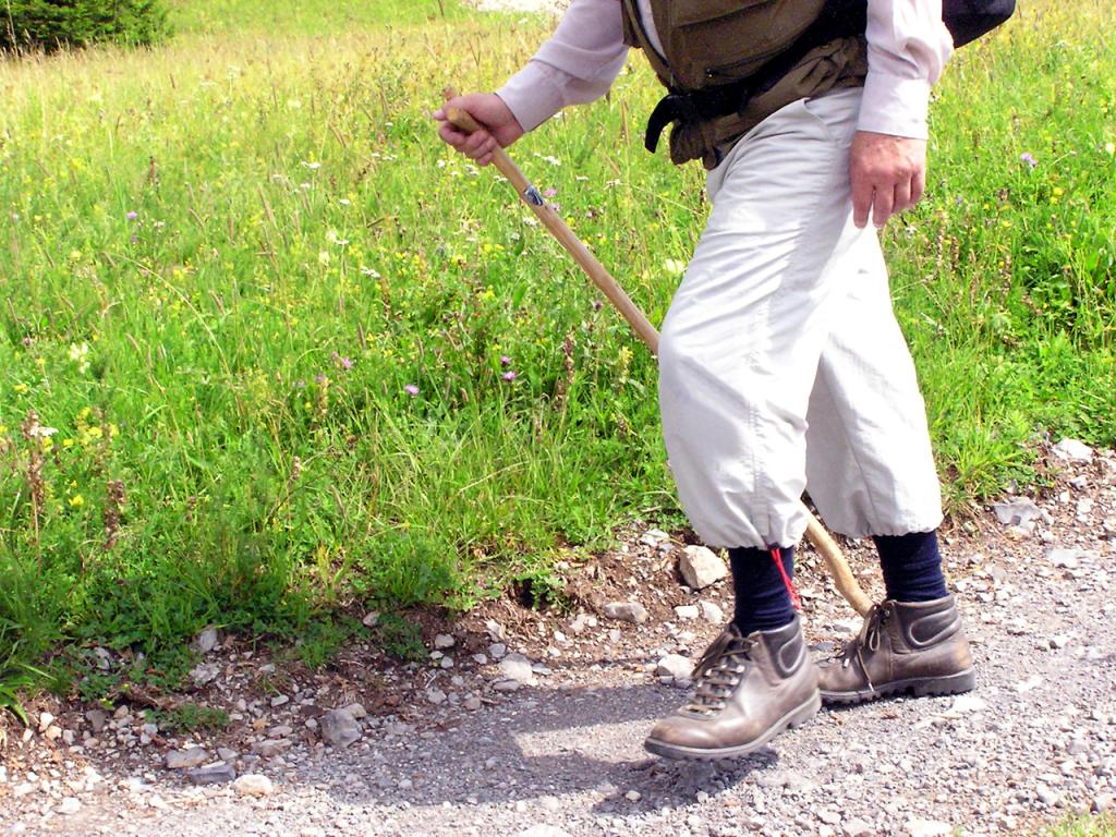 ÜLLATAV! Eestimaalaste rahvusspordiala on kõndimine