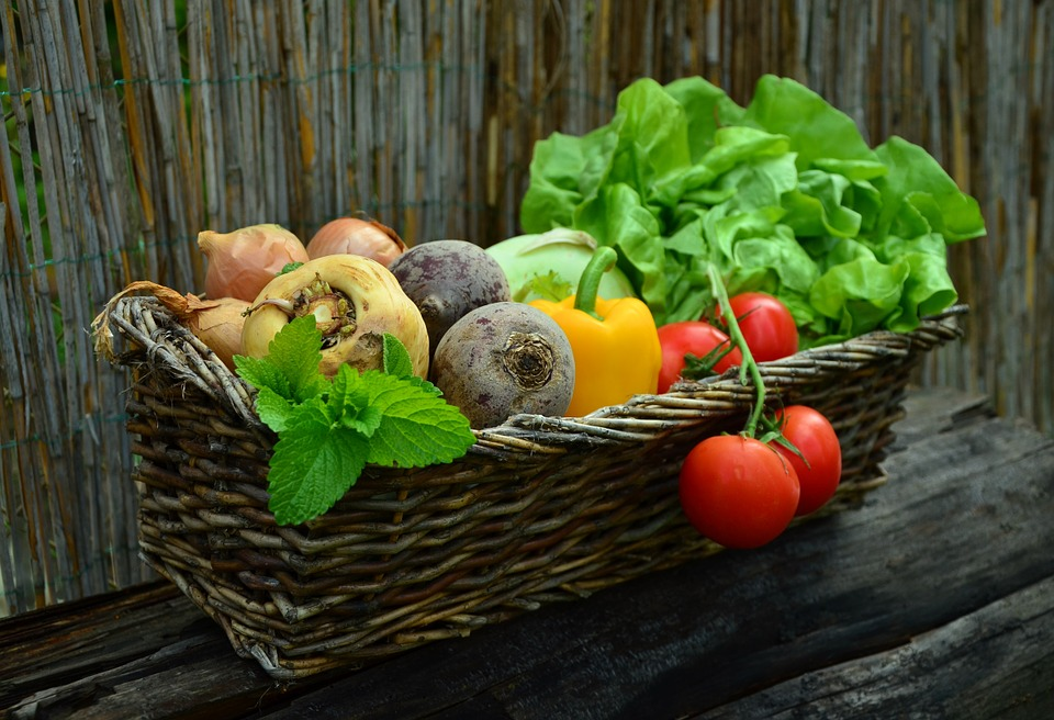 5 nippi, kuidas innustada lastes köögiviljaarmastust