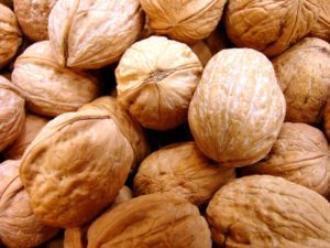 nuts-1329388