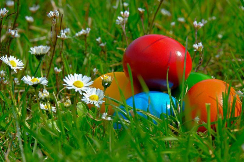 RETSEPT! Lihavõtetest üle jäänud munadest valmista maitsev munasalat karulauguga