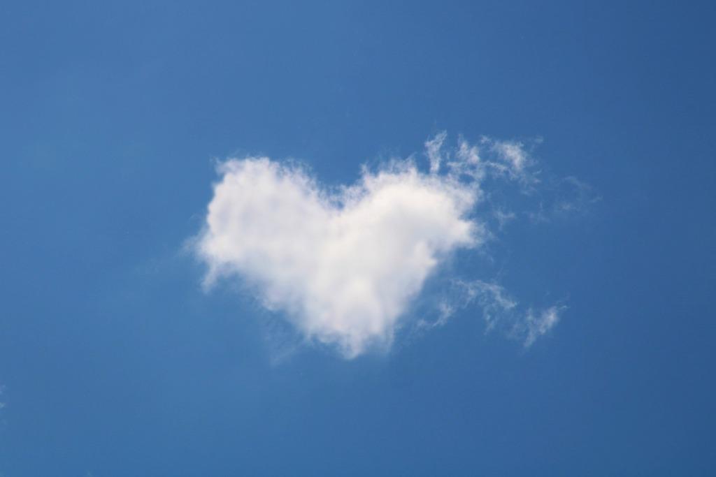 süda4