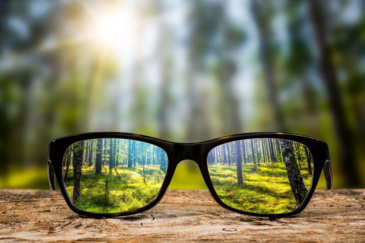 Glasses,Focus,Background,Wooden,Eye,Vision,Lens,Eyeglasses,Nature,Reflection